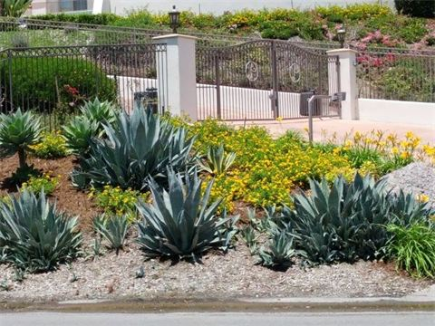 San Diego Landscaping Services